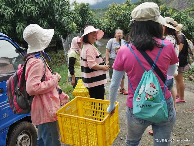 高雄六龜寶來-農家樂記趣 體驗手採金煌芒果的美好樂趣 要怎麼做,先那麼栽!預約請洽檨仔腳文化共享空間! 未分類