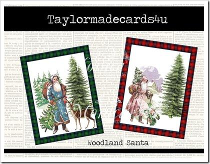 Woodland santa promo