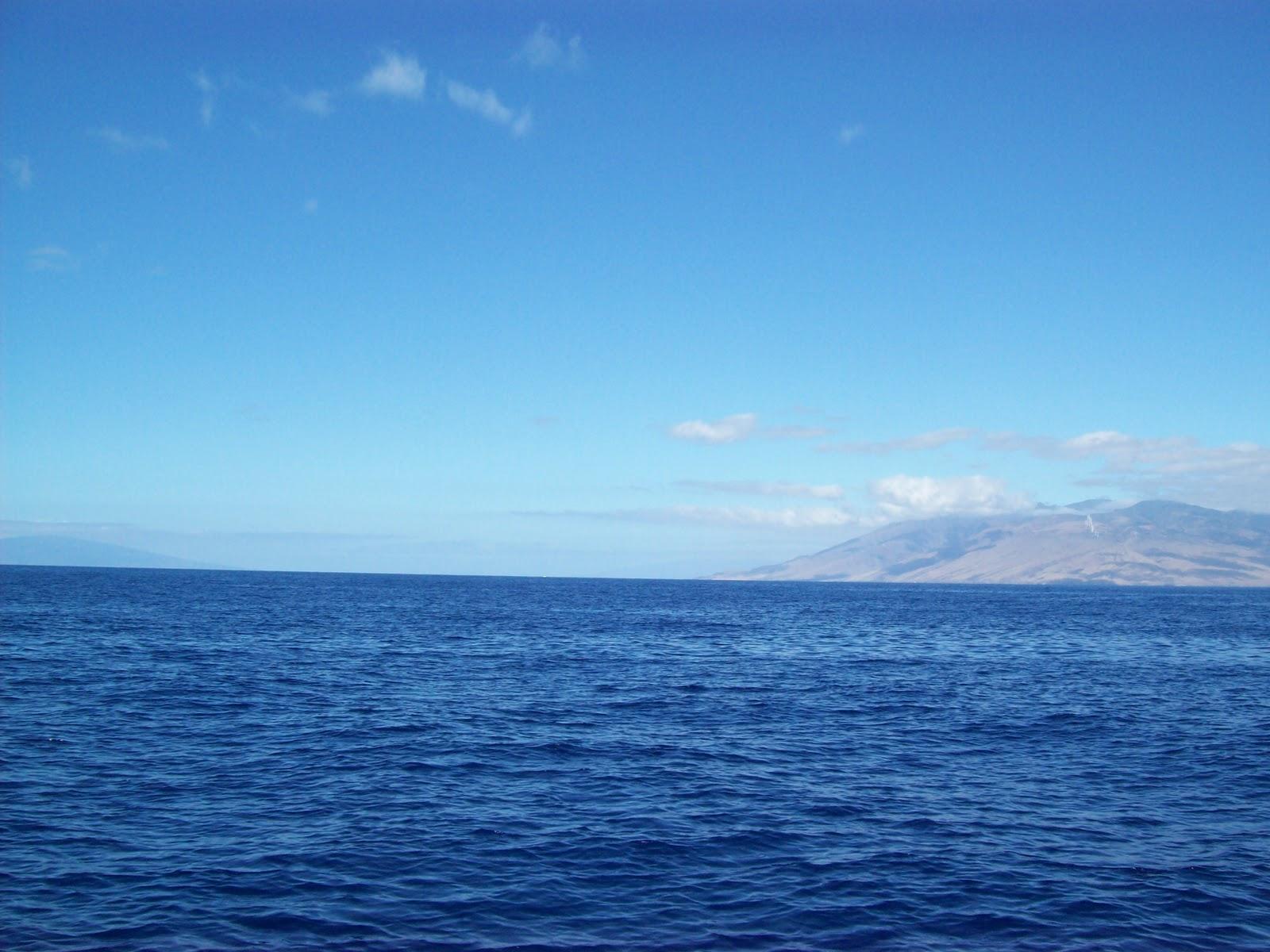 Hawaii Day 7 - 100_7864.JPG