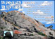La Tortuga - Asa (IVº)