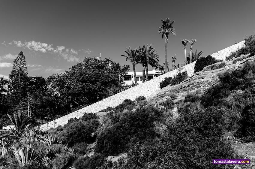 Nikon D5100, 10-20 mm, Paisajes, Blanco y negro, Cabo de la Huerta, Alicante, Muro, Desnivel, Montañas, Palmeras, Árboles,