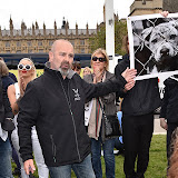 OIC - ENTSIMAGES.COM -  at the Puppy Farming Protest - demonstration and photocall 24th May 2016, rally and photocall in London's Parliament Square to raise awareness of the UK's cruel puppy farming trade, in association with PupAid, Boycott Dogs4Us and C.A.R.I.A.D.  Photo Mobis Photos/OIC 0203 174 1069