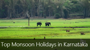 Top 10 Monsoon Holidays in Karnataka