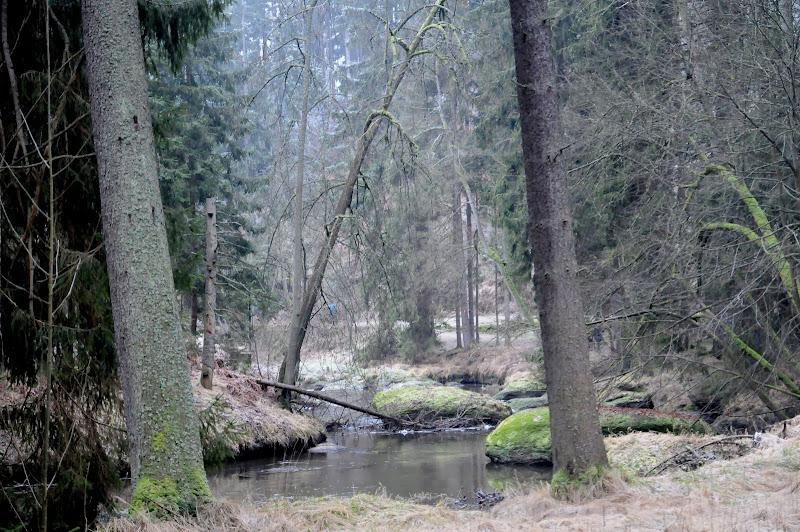 20140101 Neujahrsspaziergang im Waldnaabtal - DSC_9841.JPG