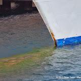 01-03-14 Western Caribbean Cruise - Day 6 - Cozumel - IMGP1101.JPG