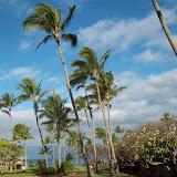 Hawaii Day 6 - 114_1708.JPG
