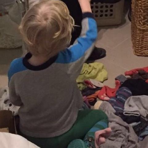 Der Kuschelbär sortiert Wäsche