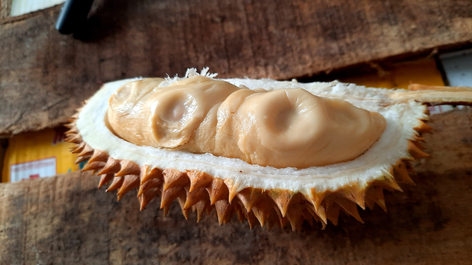 durian merica mentega