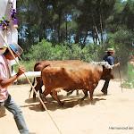 CaminandoalRocio2011_493.JPG