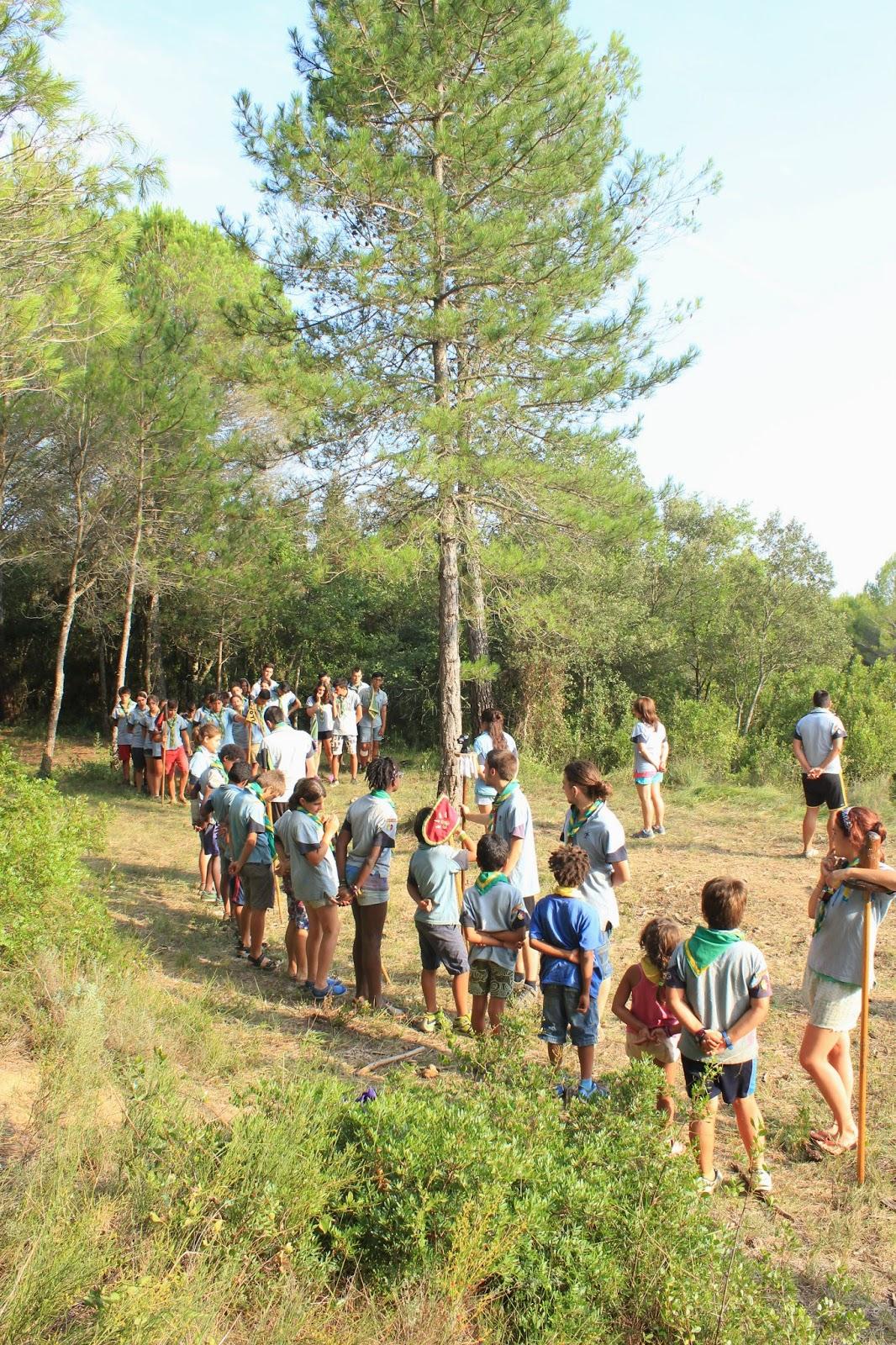 Campaments Estiu Cabanelles 2014 - IMG_0379.JPG