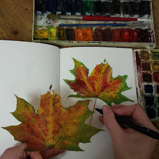 Autumn Leaf Illustration by Alice Draws The Line