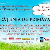 CurateniaDePrimavara2010