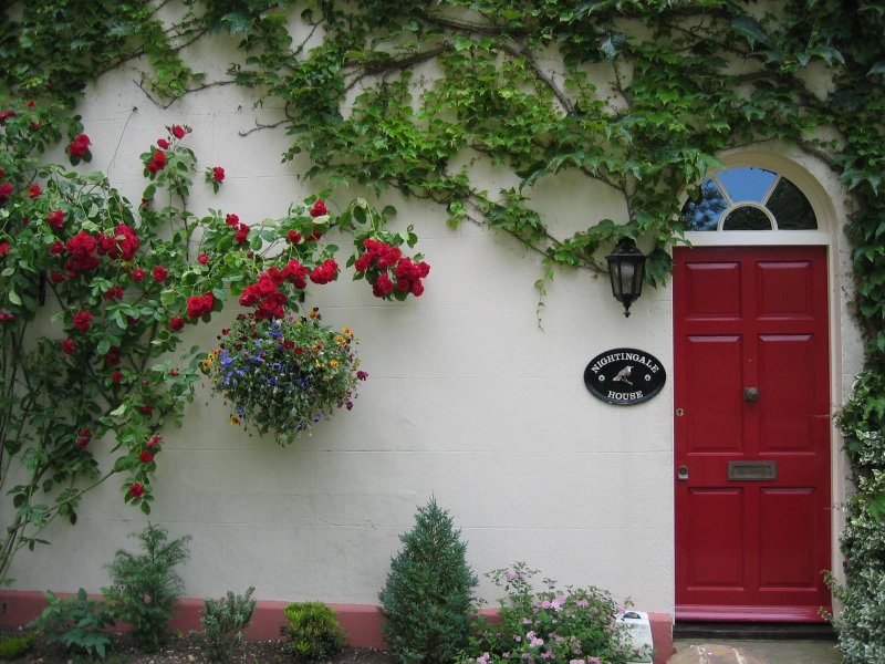 door and bushes