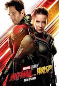 Ant-Man y la Avispa (2018) ()