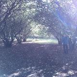 Endelave en skøn oktoberdag 2013 - WP_000510.jpg
