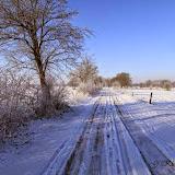 Winter - Winter-030.jpg