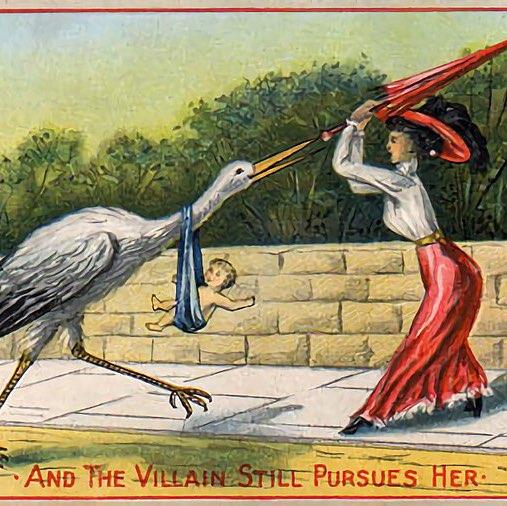 user Ann Hoffman apkdeer profile image