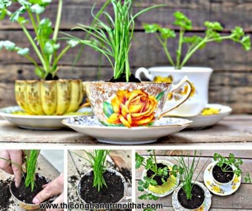 Trang hoàng nhà cửa với 20 ngôi vườn tí hon đem lộc cho gia chủ - Thi công trang trí nội thất-7