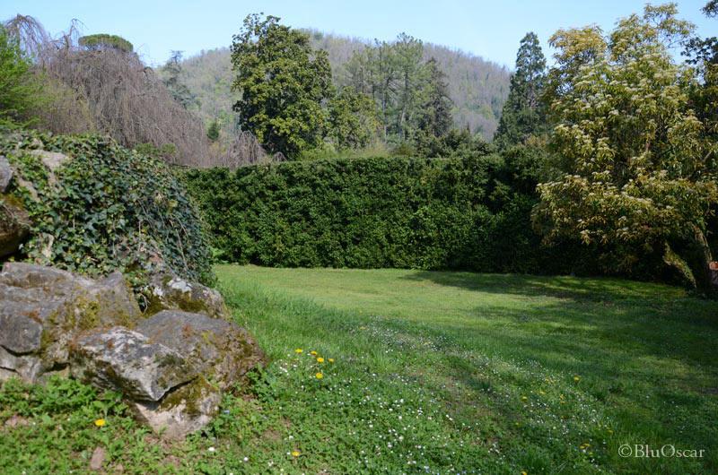 Villa Barbarigo Pizzoni Ardemani 13