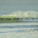 _DSC7393.thumb.jpg