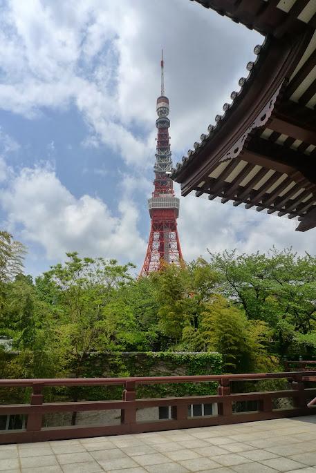 tokyo zojoji tour tokyo