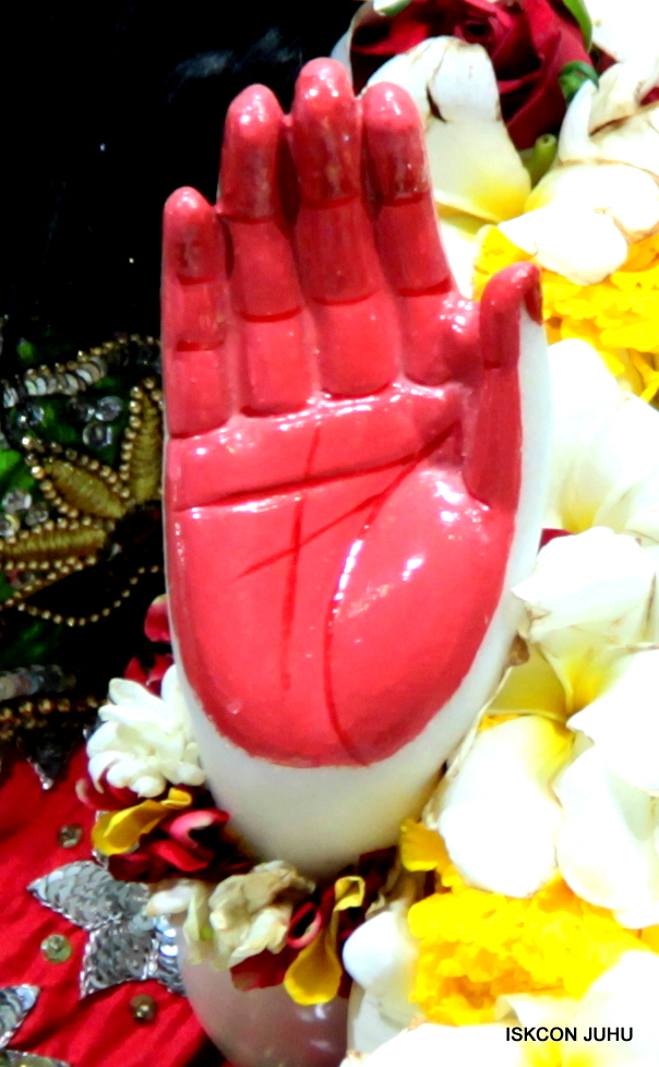 ISKCON Juhu Sringar Deity Darshan on 3rd May 2016 (35)