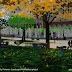 Civic_center_park_2.jpg