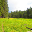 cannell_trail_IMG_1907.jpg