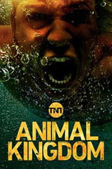 Baixar Série Animal Kingdom 3ª Temporada Torrent Dublado Grátis