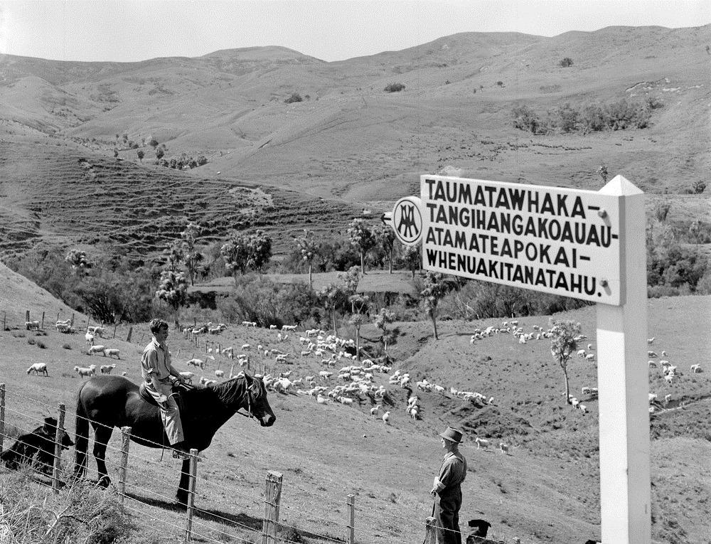 taumata-longest-name-3
