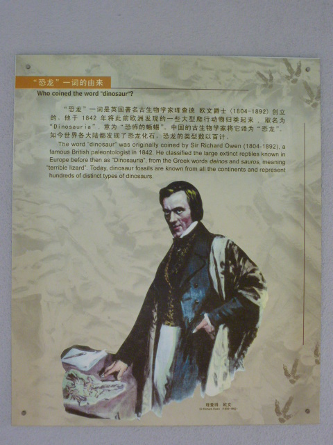 CHINE.SICHUAN.LESHAN puis ZIGONG - 1sichuan%2B459.JPG