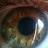 Michael W avatar image