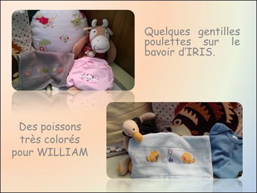 Iris-William