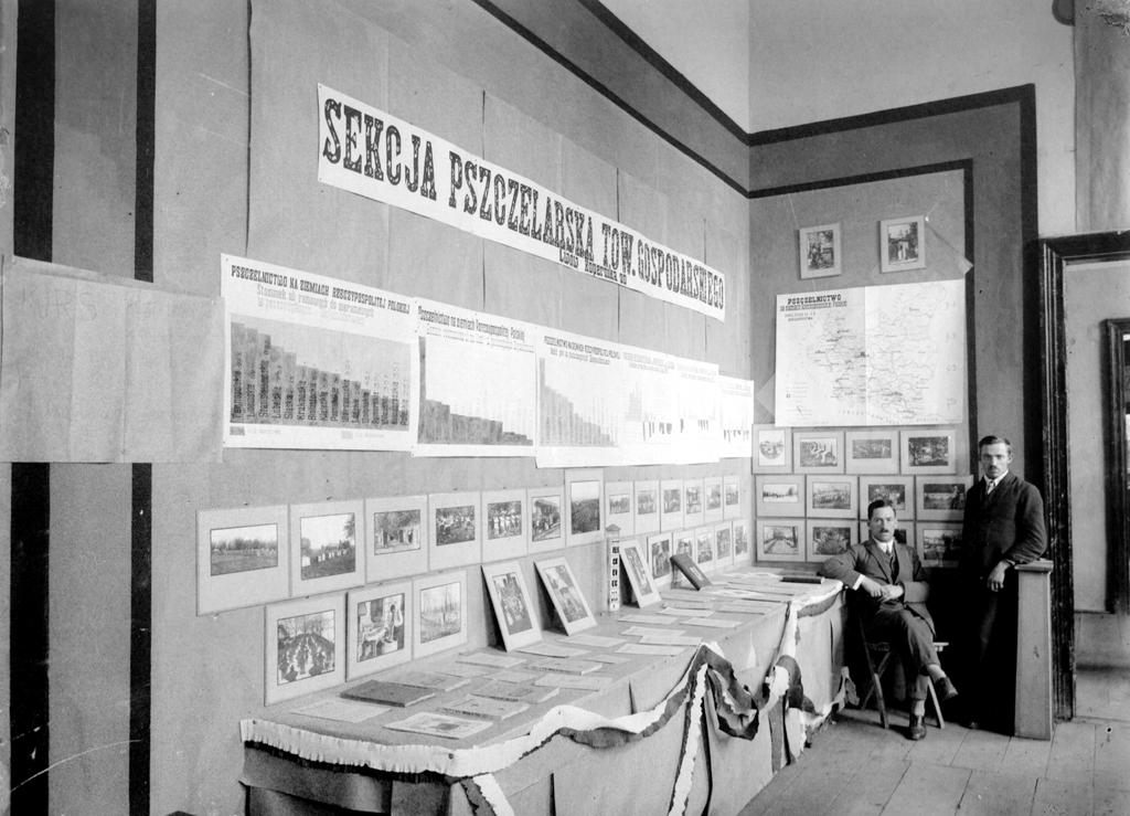 Выставки и музеи …