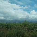 Hawaii Day 8 - 114_2176.JPG