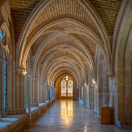 Catedral de Burgos by Jomabesa Jmb - Buildings & Architecture Places of Worship ( iglesias, arquitectura, catedral, burgos )