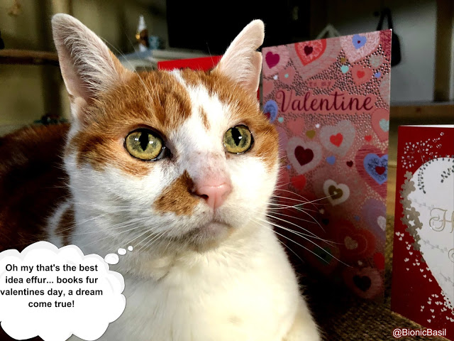 Book Reviews with Amber #156  ©BionicBasil®  Amber's Valentine Wish