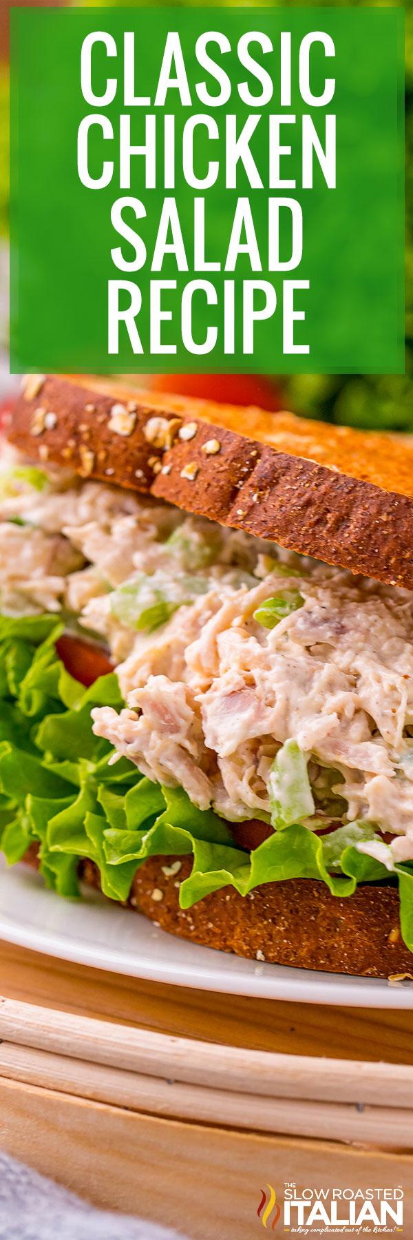 Classic Chicken Salad Recipe Closeup