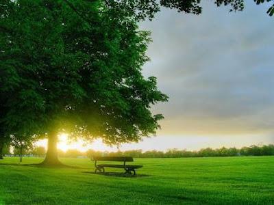 Menikmati Segarnya Pagi dan Hangatnya Senja