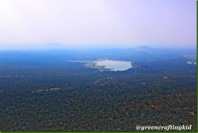 Safari-View inside reserve
