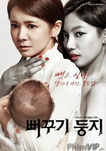 Đẻ Mướn - Two Mother poster