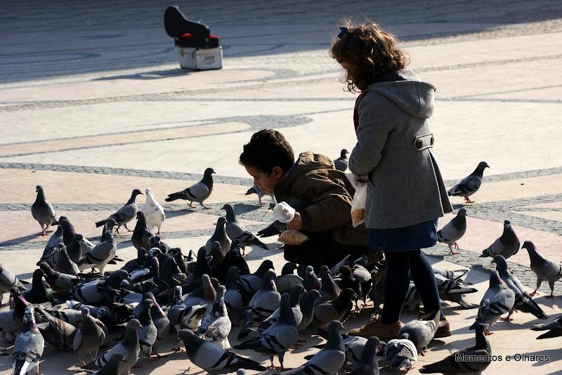 Criança alimenta os pombos