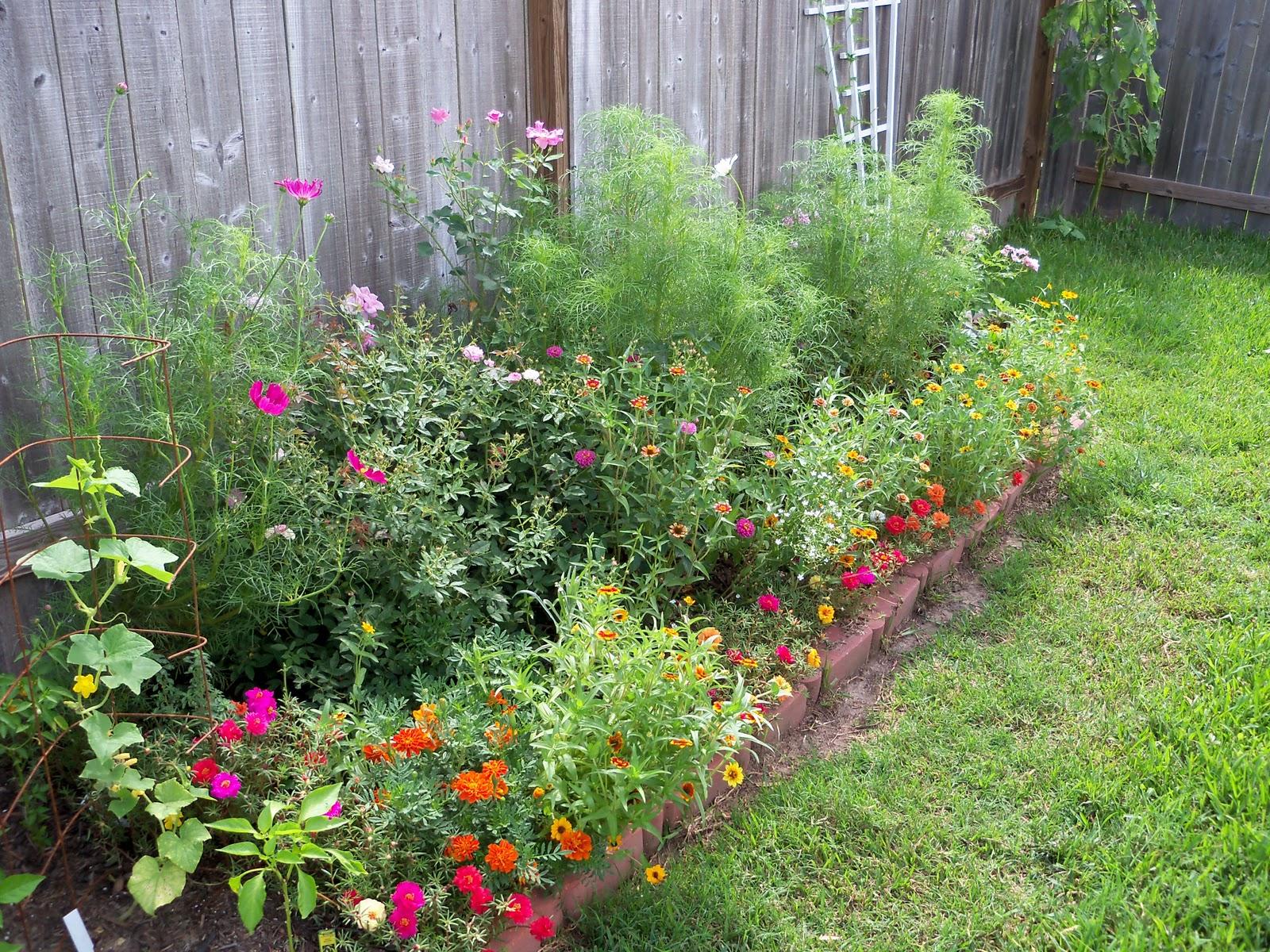 Gardening 2010, Part Three - 101_3710.JPG
