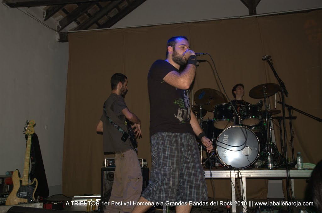 A TRIBUTOS 1er Festival Homenaje a Grandes Bandas del Rock 2010 - DSC_0225.jpg