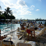Spa Standard Hotel in Miami, Florida, United States