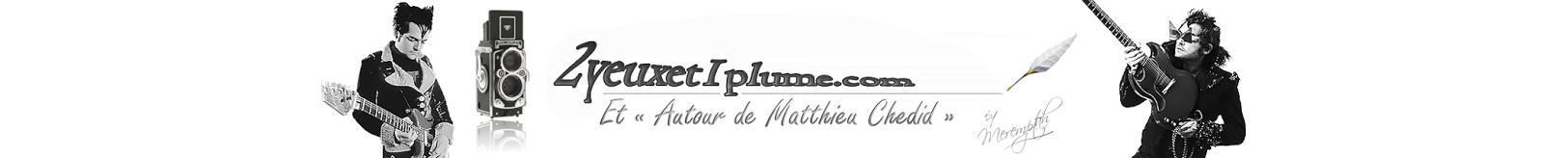 Autour de Matthieu Chedid -M- par 2yeuxet1plume