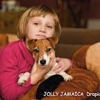 Jolly Jamaica_1.jpg