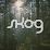 SKOG Eyewear's profile photo