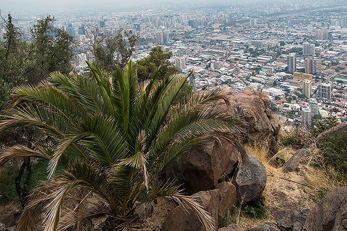 Santiago32.jpg