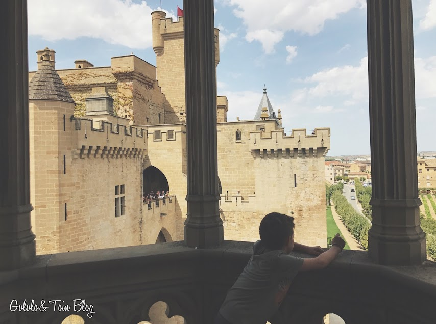 Mirador Palacio Real Olite